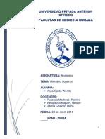 MONOGRAFIA_ANATOMIA1.docx