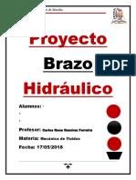 Proyecto Brazo Hidráulico