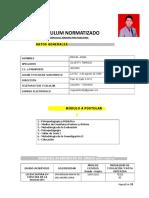 Curriculum Normatizado 1