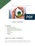 Cultura Ambiental.docx