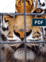 Zoo Captivity Industry