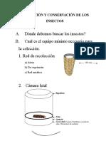 Recolección y Conservación de Los Insectos