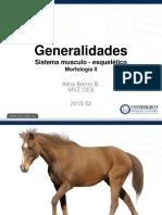 2015 Generalidades SME