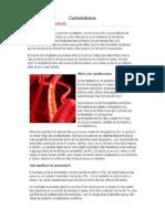 ABP Carbohidratos
