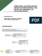 METABOLISMO LIPIDOS.pptx