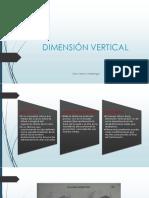 Dimension Vertical