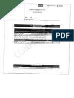 perfil dragoneante.pdf