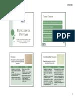 Patologias em pinturas.pdf