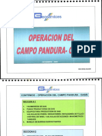 Operaciones de campo Pandura-Oasis.pdf