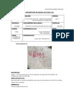 5. Ficha Tecnica BM