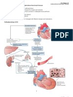 Chap.30 Complications From Heart Disease Word