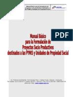 Manual Proyectos INAPYMI-1