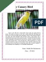 My Canary Bird