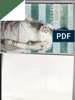 Gustavo San Roman- AMOR Y NACION (Fragmento)