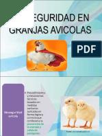 Bioseguridadavicola 140712171249 Phpapp02 1