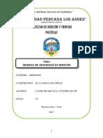 Medidas de Seguridad en Derecho Monografia Upla Tipo Libroa5