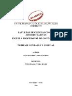 CONCEPTOS DE LAS 20 PALABRAS PERITAJE CONTABLE.docx