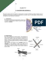 Clase n° 17 conceptos de genetica y genetica mendeliana