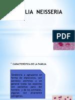 Familia Neisseria