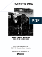 Basic Camel Keeping for Beginners