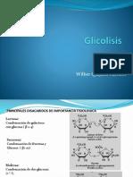 glicolisis.pptx
