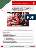 212n04 Propuesta Modelo Federacion Peruana de Futbol
