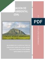 DIA_Morro de Calzada Versión 01
