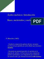 ac. nucleicos.ppt