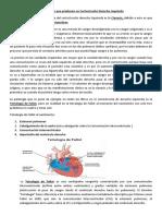 Cardiopatías que producen un Cortocircuito Derecha