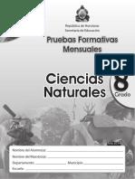 Pruebas Formativas Naturales 8