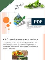 4 Unidad Desarrollo Sustentable