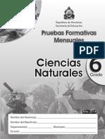 Pruebas Formativas Naturales 6