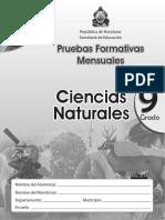 Pruebas Formativas 9 Naturales