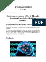 Curso de Nuestro Cerebro Parte 1