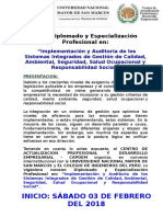 Implementacion y auditoria trinorma.doc
