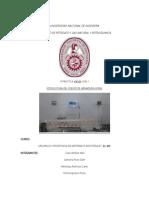 Estructura Informe Res