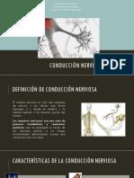 Conducción Nerviosa
