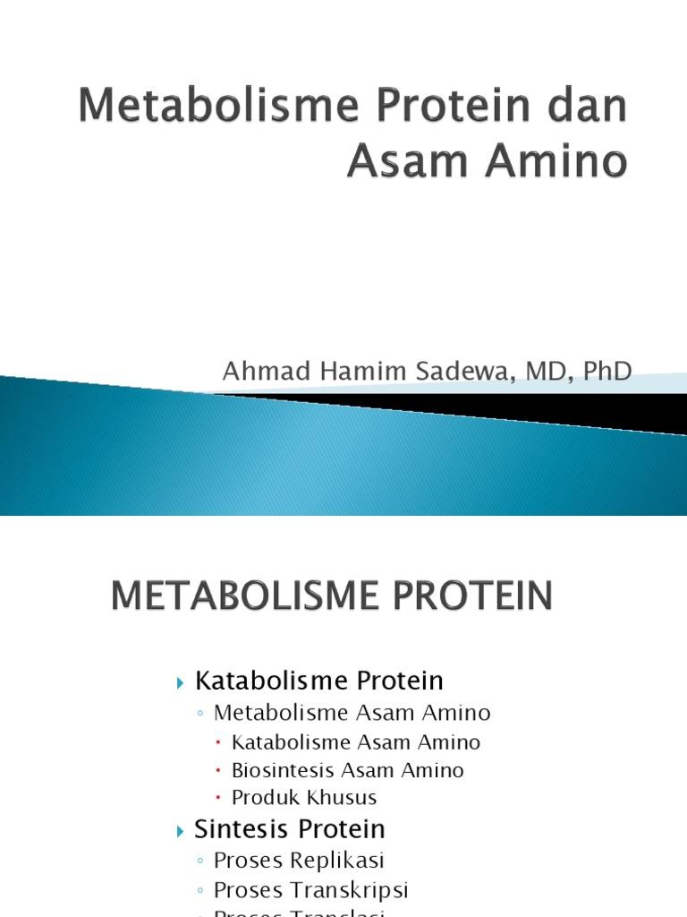 Metabolisme asam amino.