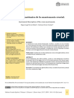Descripción Anatómica de La Anastomosis Crucial