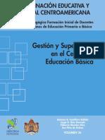 Gestion Y Supervision en El Centro de Educacion Basica