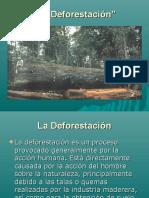 ladeforestacin-101025144559-phpapp01