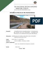 INFORME-PRACTICAS-PROFESIONALES.pdf