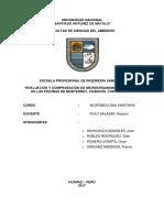 Evaluación de Microorganismos y Metales en Las Piscinas de Monterrey, Chancos y Continental