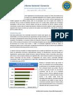 iscomercio- IEDEP 2013