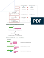 resumo funções oxigenadas.docx