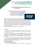 Conepro-sul 2010 (Artigo) - Implantação da Manufatura Enxuta numa célula de usinagem – Um Estudo de caso