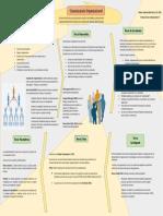 Comunicación Organizacional Infografía