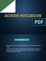 acidos nucleicos diapositiva.pptx