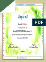 borsu.pdf