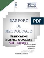 Rapport TP de Métrologie